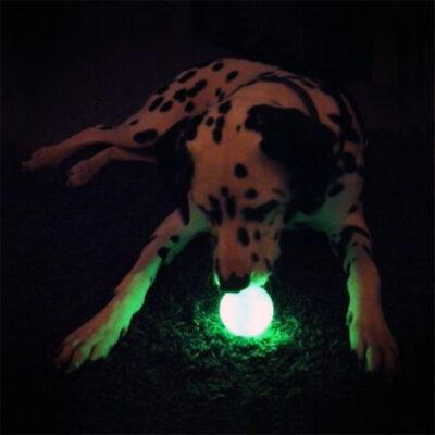 Glow in Dark Dog Ball